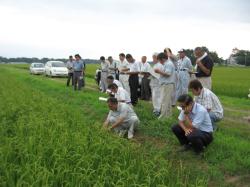 米から作る酒造り 契約農家
